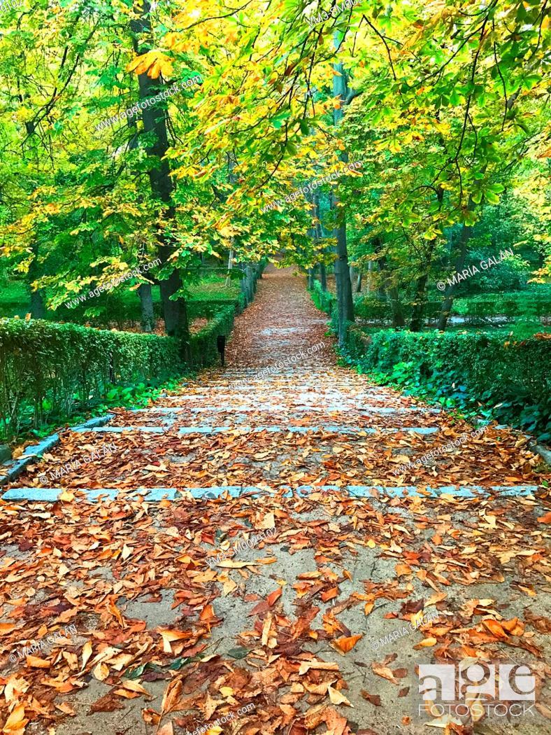 Stock Photo: El Retiro park in Autumn. Madrid, Spain.