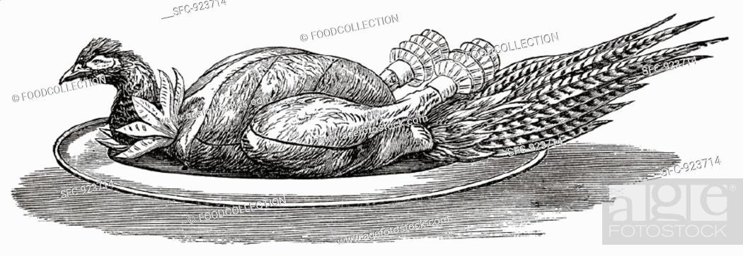 Stock Photo: Pheasant on silver platter (illustration).
