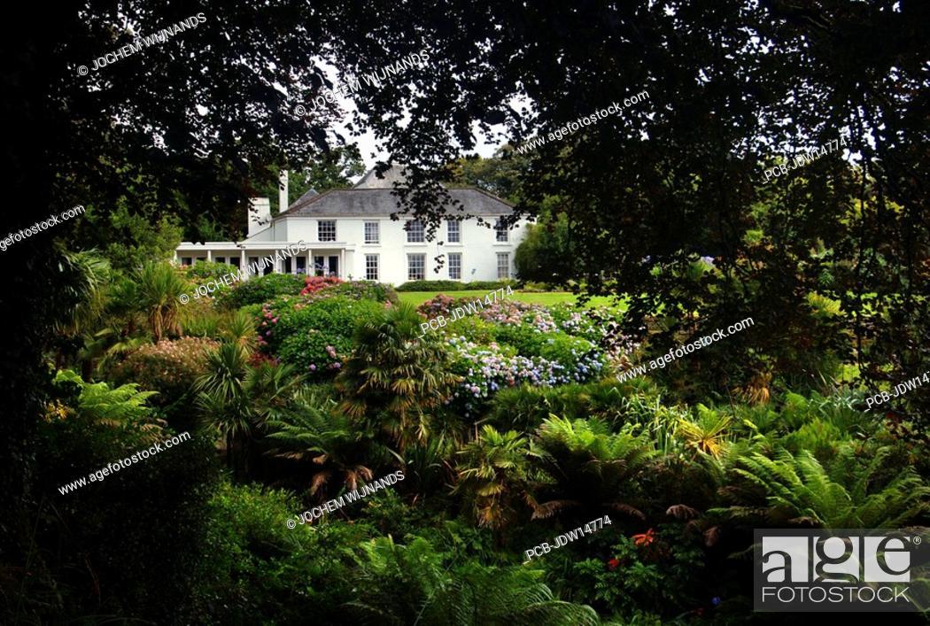 Stock Photo: Cornwall, Mawnan Smith, Trebah botanical Garden, a sub-tropical ravine garden.