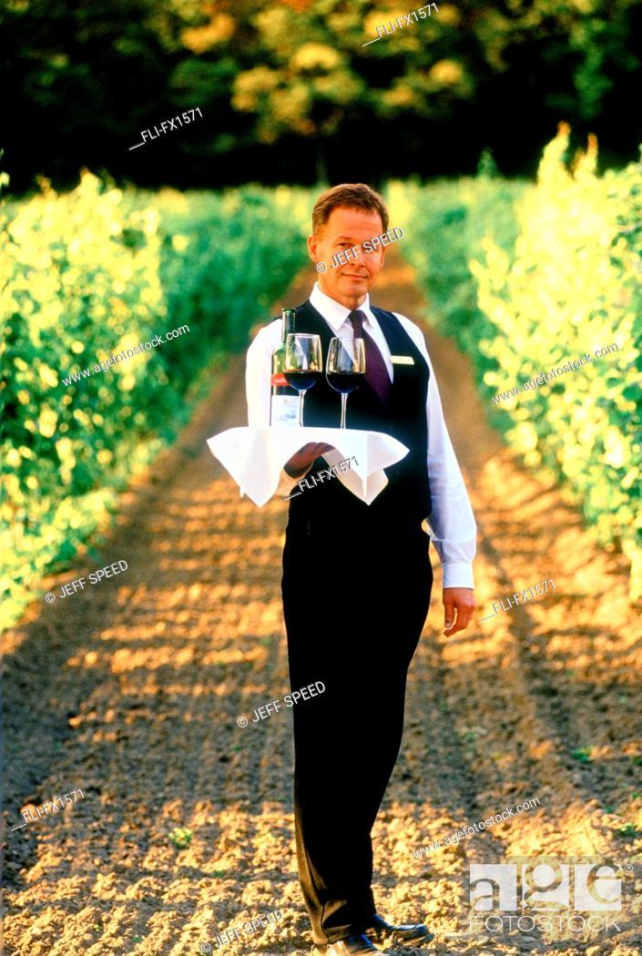 Stock Photo: Waiter in Vineyard, Niagara on the Lake, Ontario.
