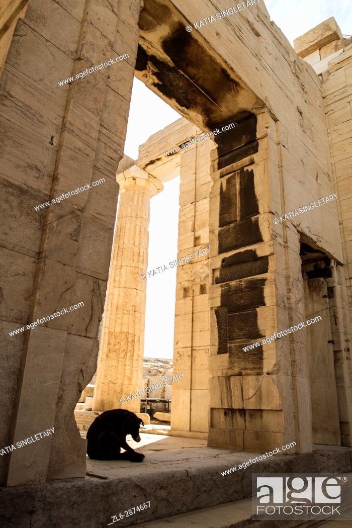 Imagen: Acropolis Parthenon restoration renovation Athens Greece Greek. The Parthenon is a temple of the Greek goddess Athena, built in the 5th century BC on the.