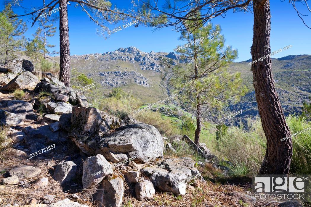 Stock Photo: Peluca cliff in the Sierra de Gredos from The Horcajo. Mijares. Avila. Castilla Leon. Spain. Europe.