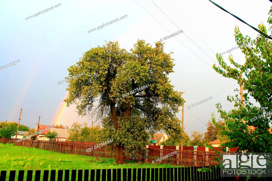 Stock Photo: rainbow after the rain in the village.