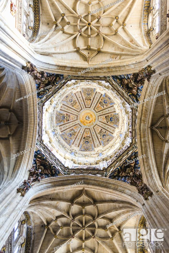 Imagen: Interior of the dome, the New Cathedral is one of the two cathedrals of Salamanca, Castilla y Leon, Spain, Europe.