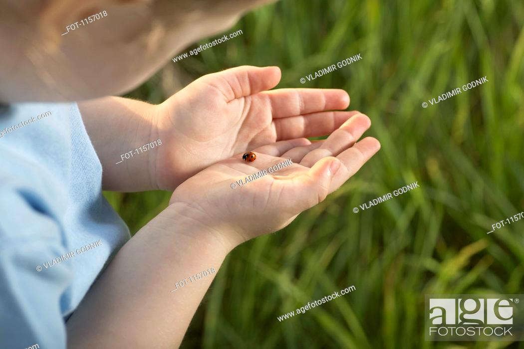 Stock Photo: Detail of a girl holding a ladybug.