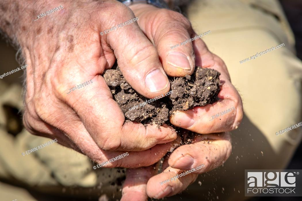 Stock Photo: Hands break up chunks of soil, Debre Berhan, Ethiopia.