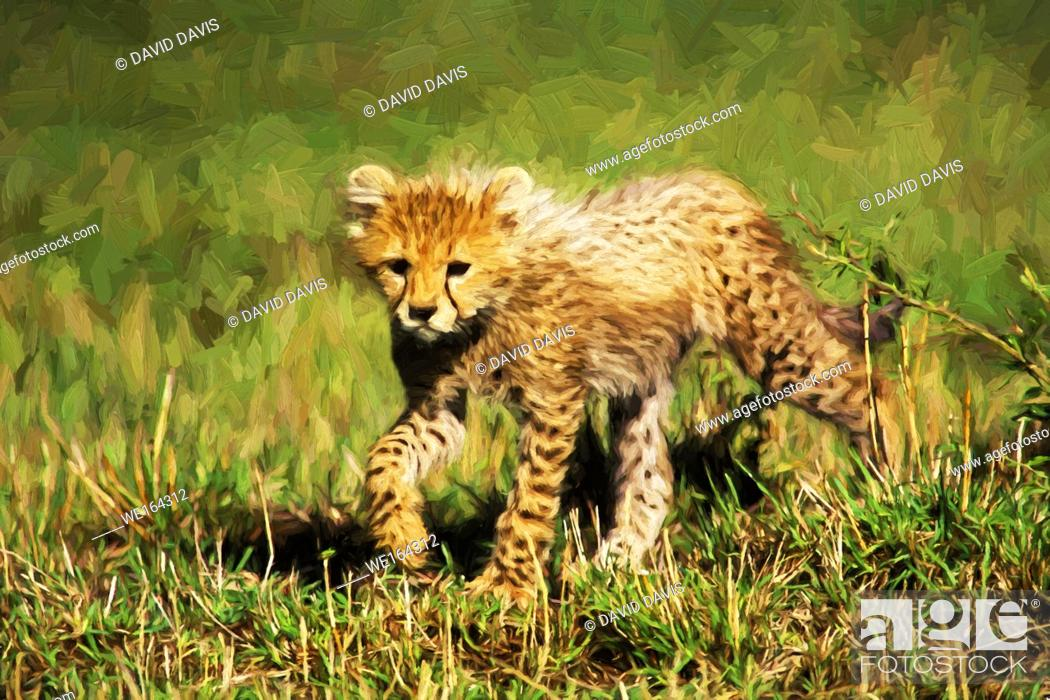 Stock Photo: Impressionist art of a Cheetah Cub (Acinonyx jubatus) in the Masia Mara Game Reserve, Kenya, Africa.
