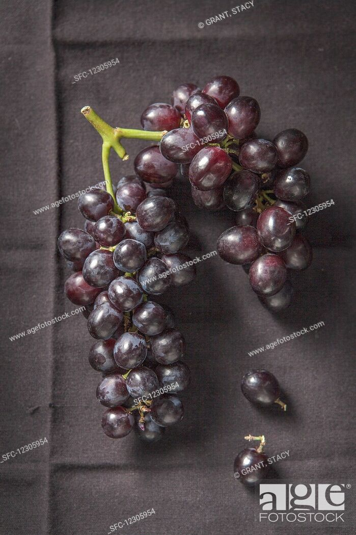 Imagen: Bunch on black grapes on black cloth.
