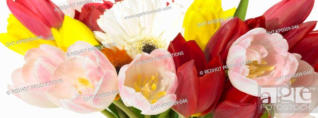 Stock Photo: Assorted flowers in a bouquet.