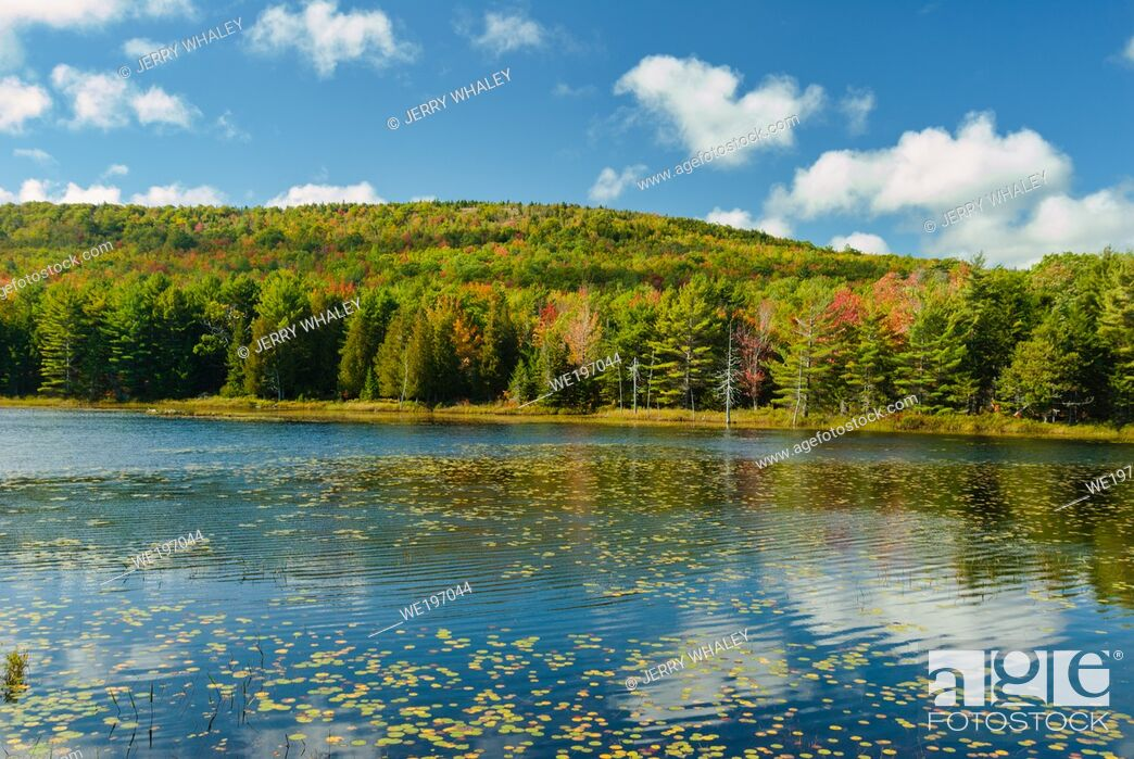 Stock Photo: Breakneck Ponds in Acadia National Park on Mount Desert Island, Maine, USA.