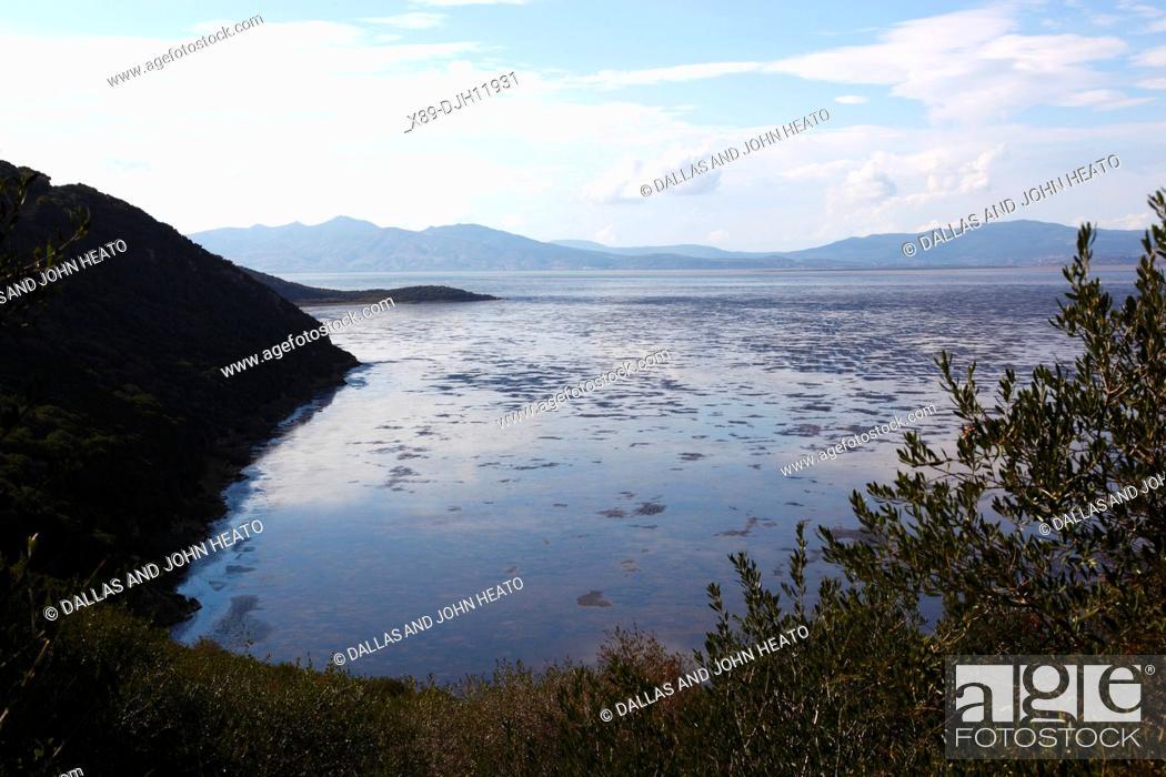 Stock Photo: Africa, Tunisia, Ichkeul National Park, Lake Ichkeul.