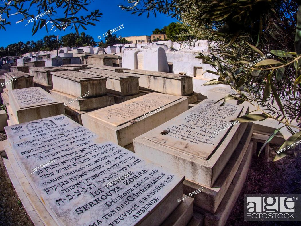 Stock Photo: Morocco, Fes, Jewish Cementery, Mellah area, at Fes.