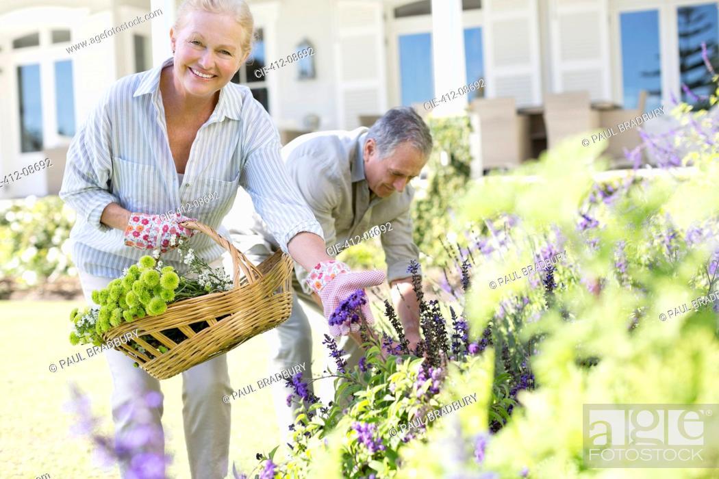 Stock Photo: Senior couple picking flowers in garden.