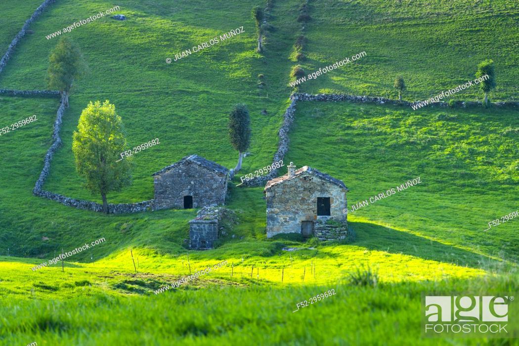 Stock Photo: Cabaña pasiega and meadows, Miera Valley, Valles Pasiegos, Cantabria, Spain, Europe.
