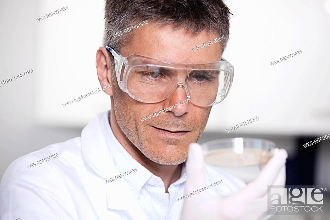 Stock Photo: Germany, Bavaria, Munich, Scientist holding liquid in petri dish for medical research in laboratory.