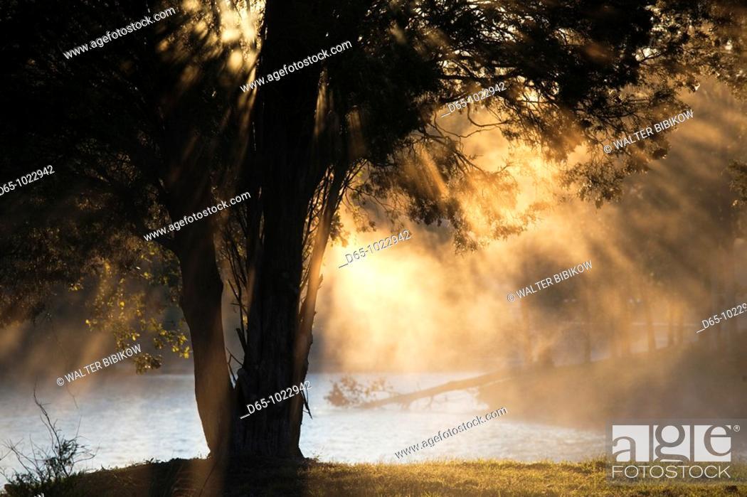 Stock Photo: USA, Alabama, Muscle Shoals Area, Florence, Lake Wilson, morning fog.