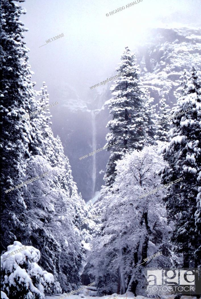 Stock Photo: Yosemite Falls, Lower Falls.