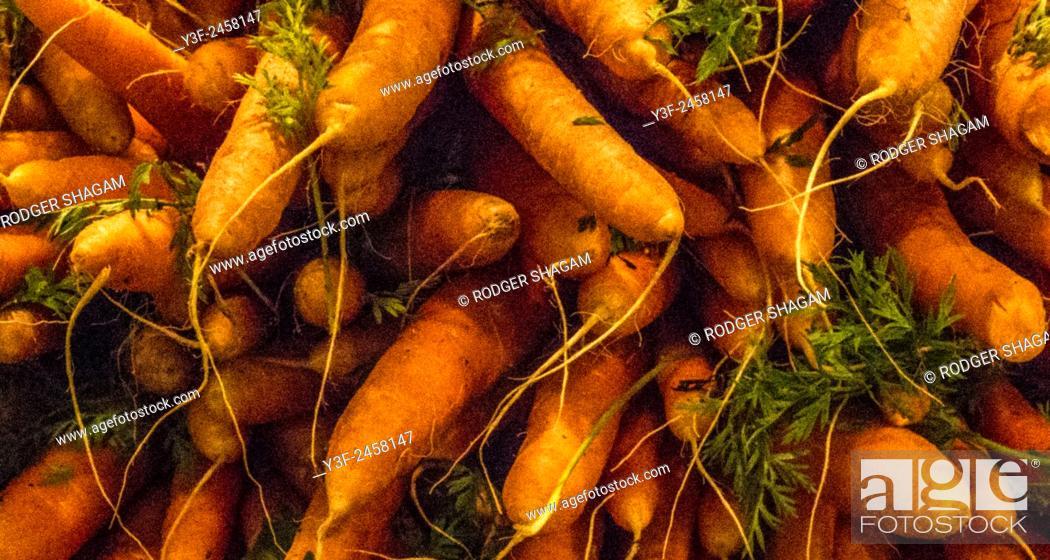 Stock Photo: Vegetables on display.