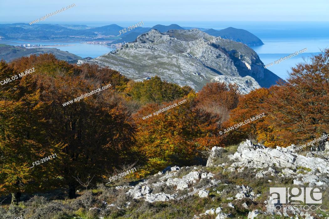 Stock Photo: View of Mount Candina from Mount Cerredo, Beech forest in autumn at Cerredo Mountain, Cantabrian Sea, MONTAÑA ORIENTAL COSTERA MOC, Castro Urdiales, Cantabria.