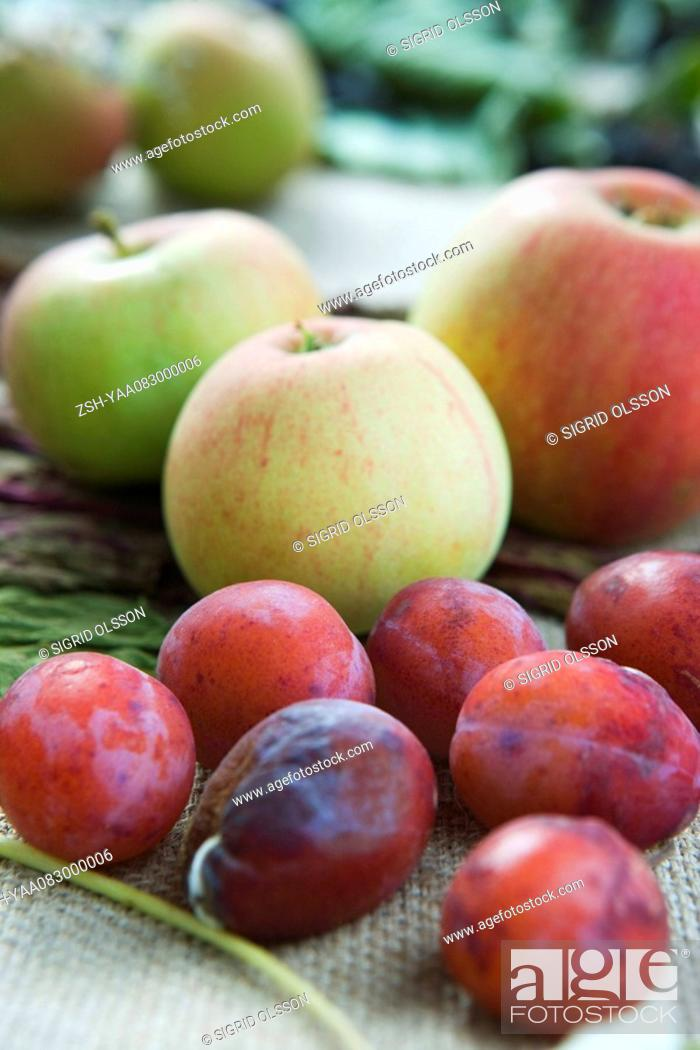 Stock Photo: Apples and plums.