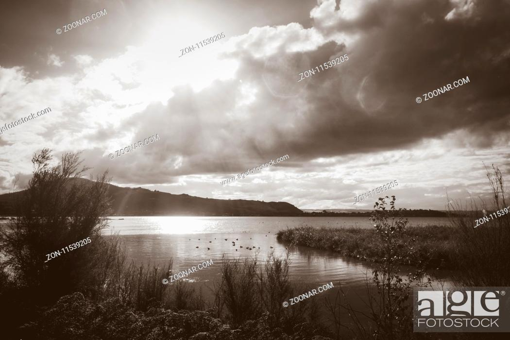 Imagen: Rotorua lake view, New Zealand. Black and white picture.
