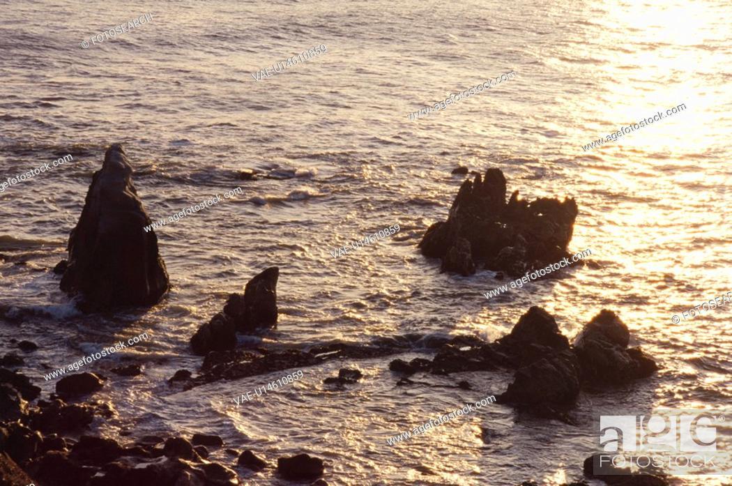 Stock Photo: Reef.