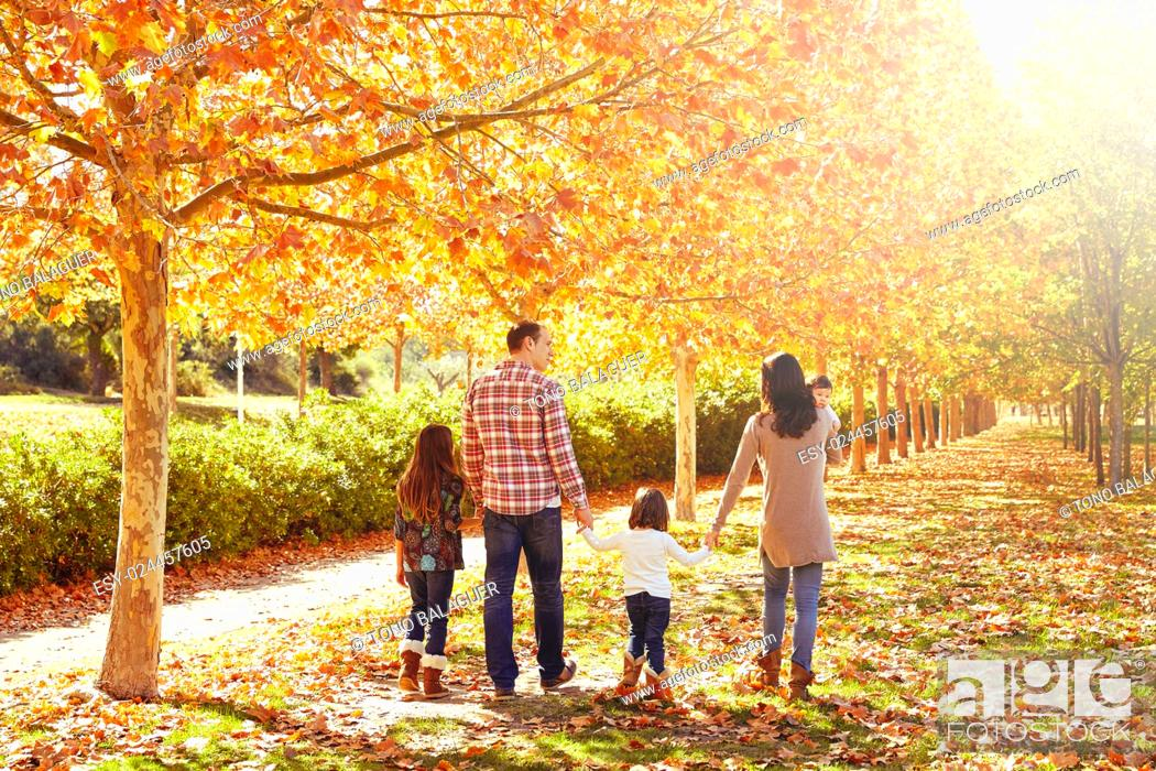Stock Photo: family walking in an autumn park with fallen fall leaves.