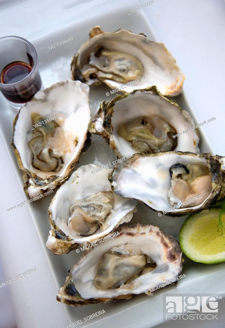 Stock Photo: Oysters on plate.