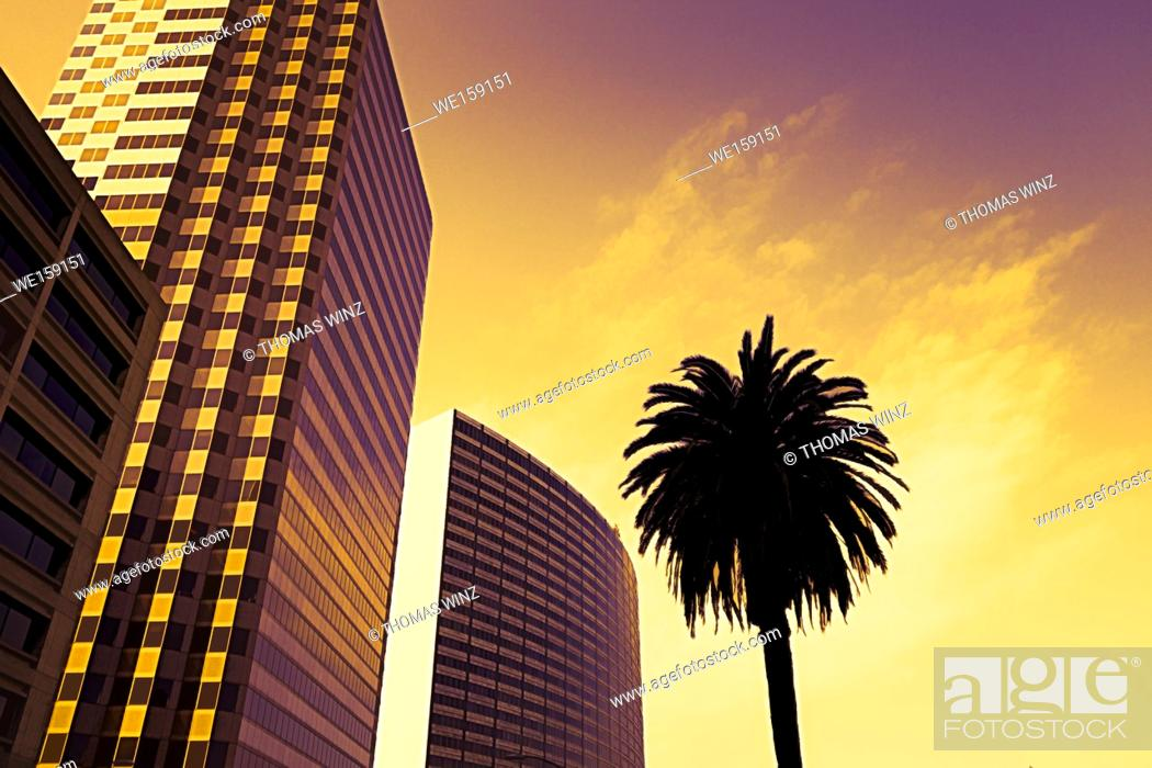 Stock Photo: highrise buildings and palm tree in Downtown Oakland , California , USA.
