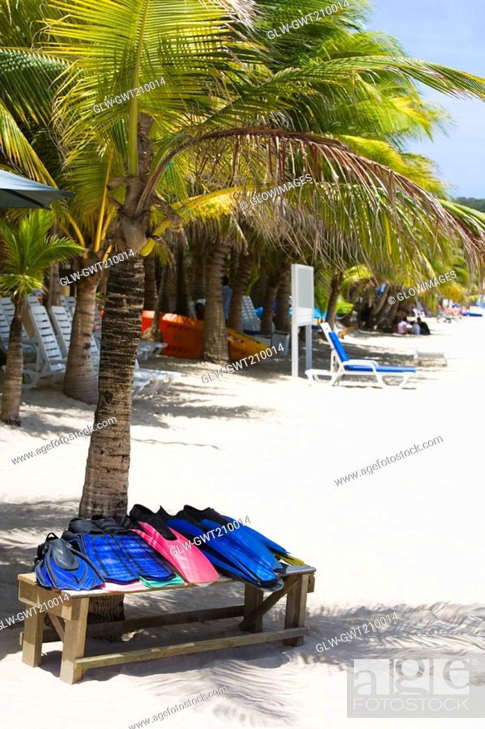 Stock Photo: Flippers on a bench under a palm tree on the beach, West Bay Beach, Roatan, Bay Islands, Honduras.
