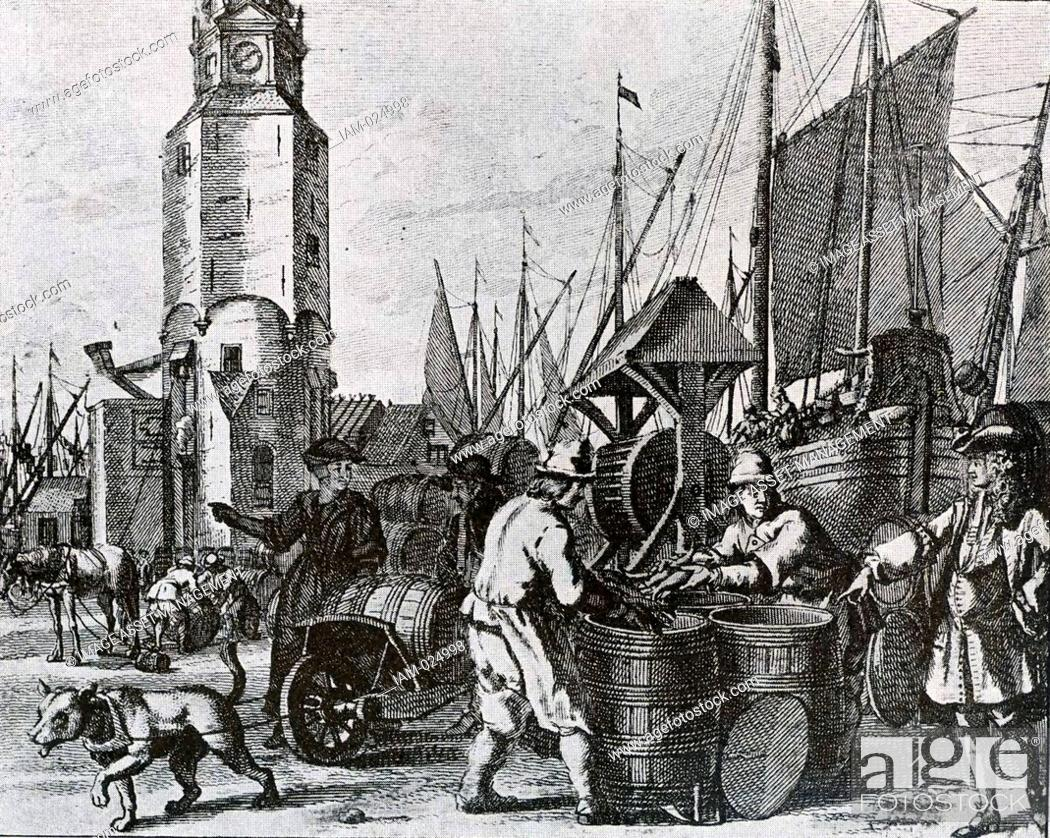 Stock Photo: the herring fishery in Holland. Packing and trade increased continuously in the 17th century.