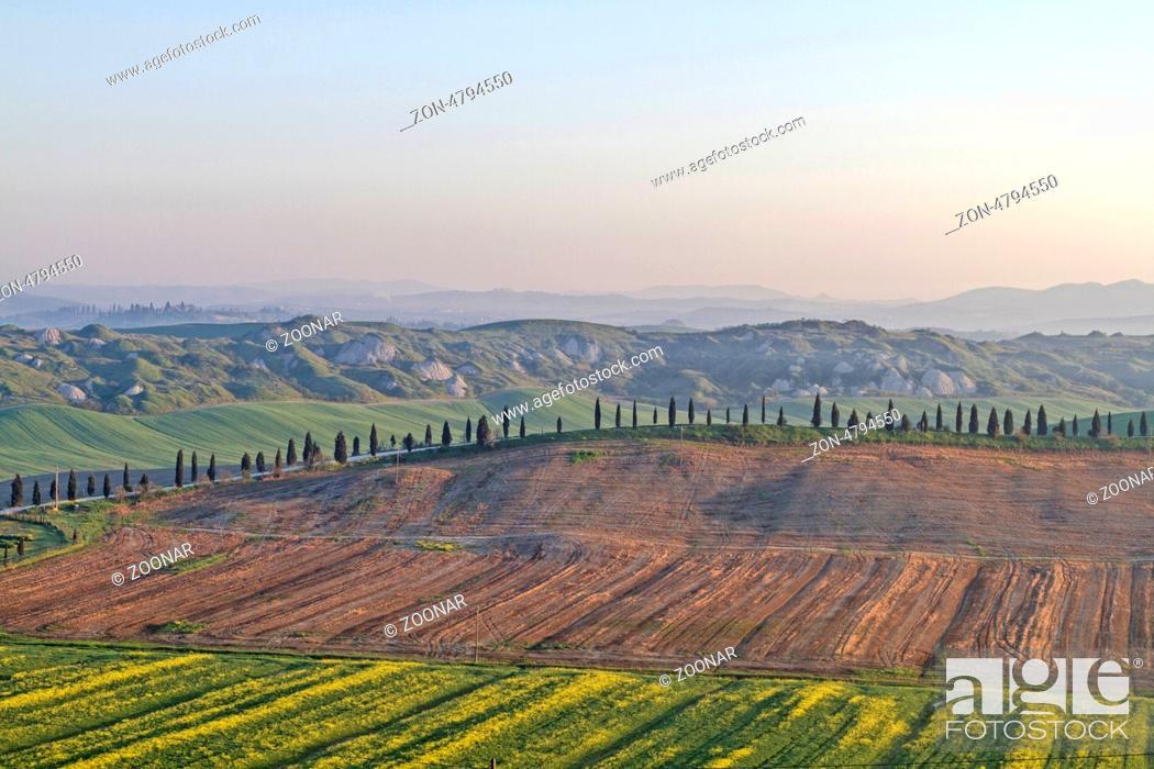Stock Photo: Tuscany in spring.