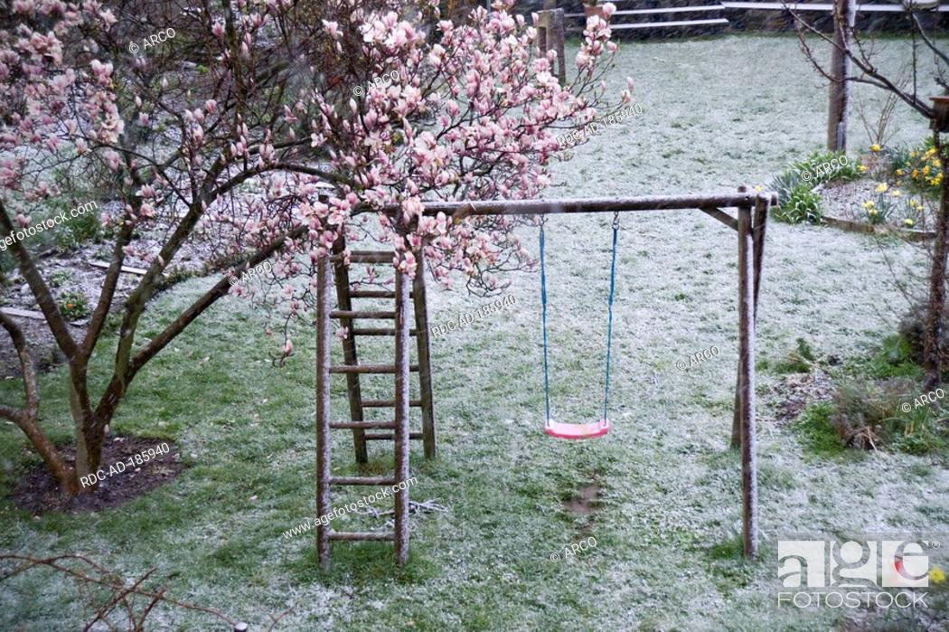 Magnolia Tree And Swing In Garden Karslruhe Baden Wurttemberg