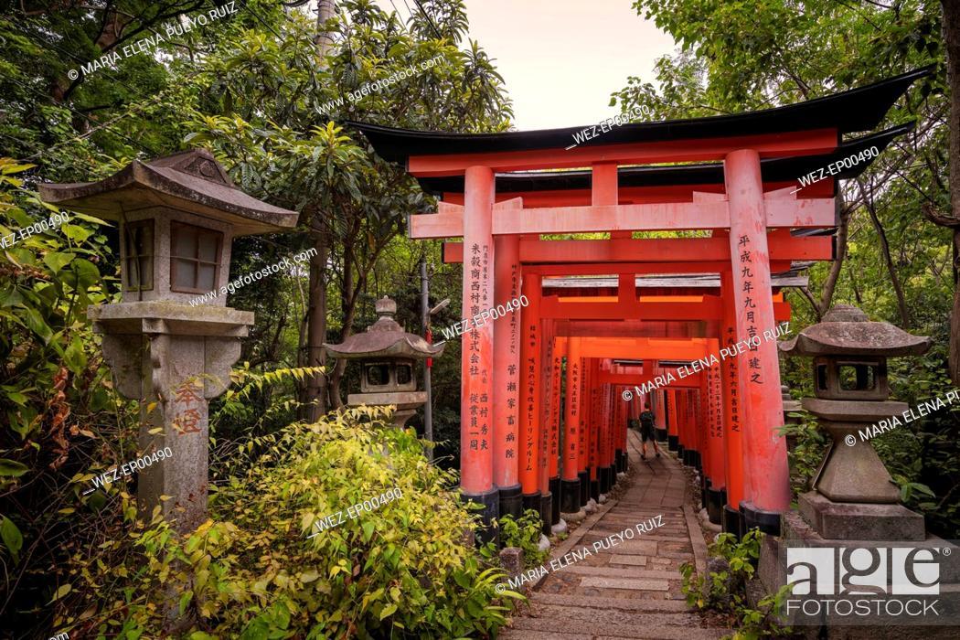 Photo de stock: Japan, Kyoto, Fushimi Inari-Taisha temple, Torii Gate, Tourist with backpack.