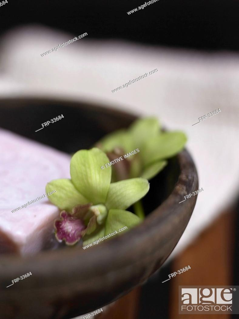 Imagen: orchid blossom in an wooden dish.