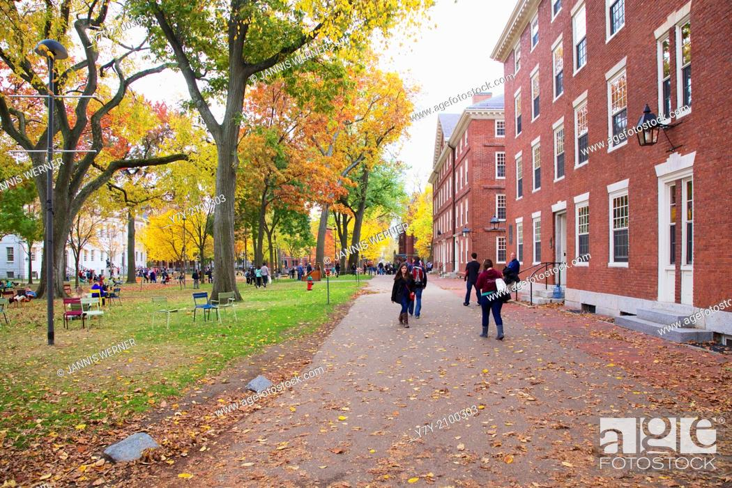 Stock Photo: Harvard Yard, old heart of Harvard University campus, lit up in splendid Fall colors on a beautiful day in Fall 2013 in Cambridge, MA, USA.