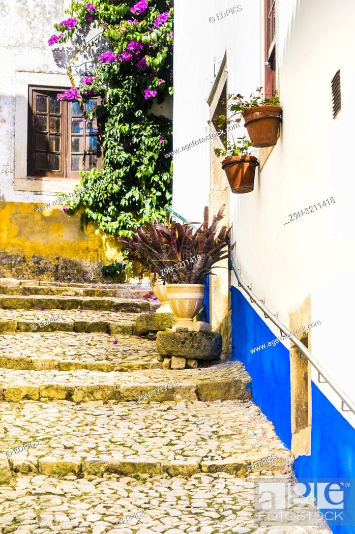Imagen: paved cobblestone staircase with flowerpots, obidos, portugal.