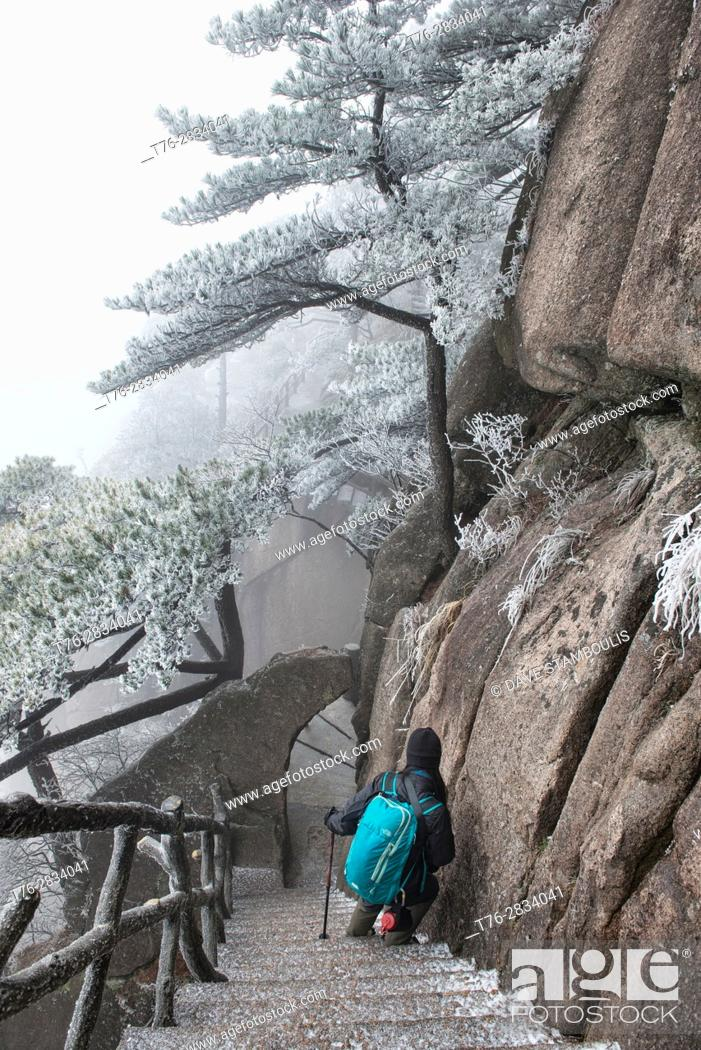 Stock Photo: Winter wonderland, hiking in Huangshan National Park, Anhui, China.
