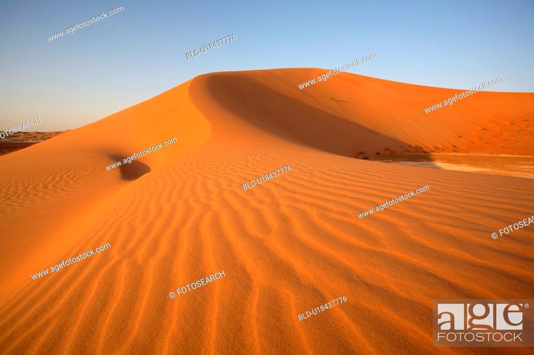 Stock Photo: desert, sand, view.