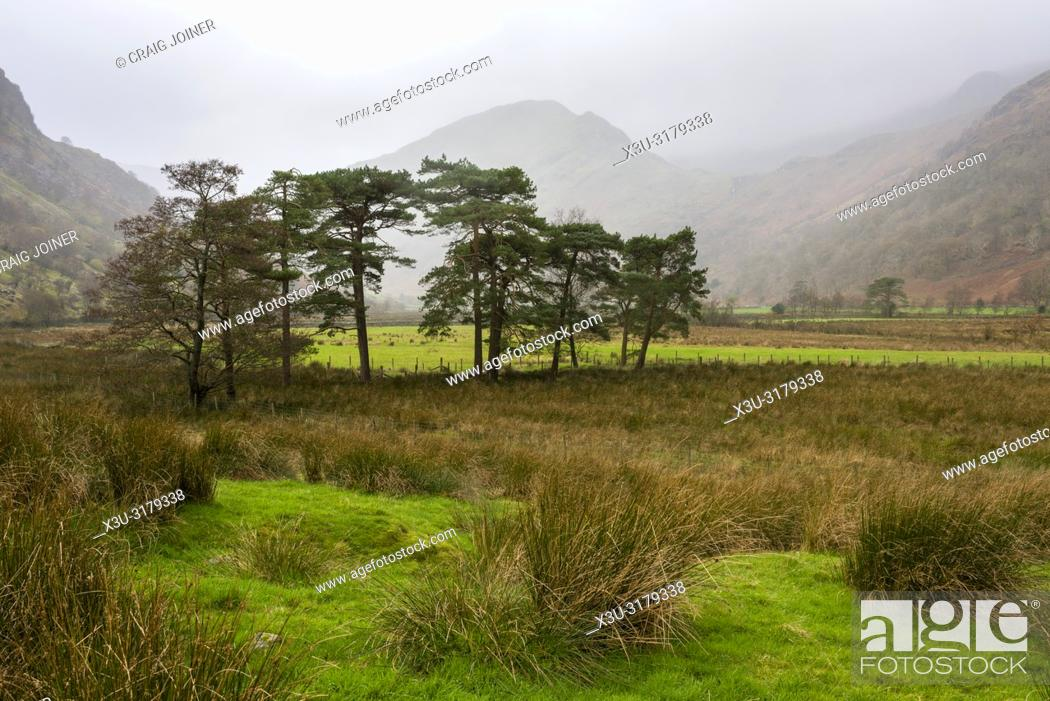 Stock Photo: The Borrowdale valley near Seathwaite in the Lake District National Park, Cumbria, England.