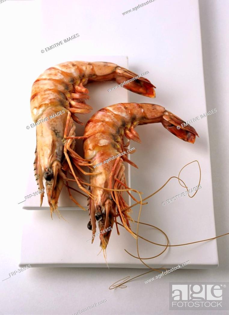 Stock Photo: Shrimps.