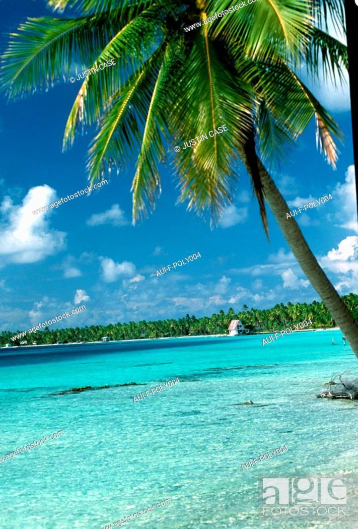 Stock Photo: French Polynesia - Papeete.