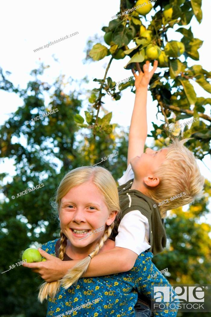 Stock Photo: Boy 7-9 on sister's 11-13 back, reaching for apple, portrait of girl smiling.