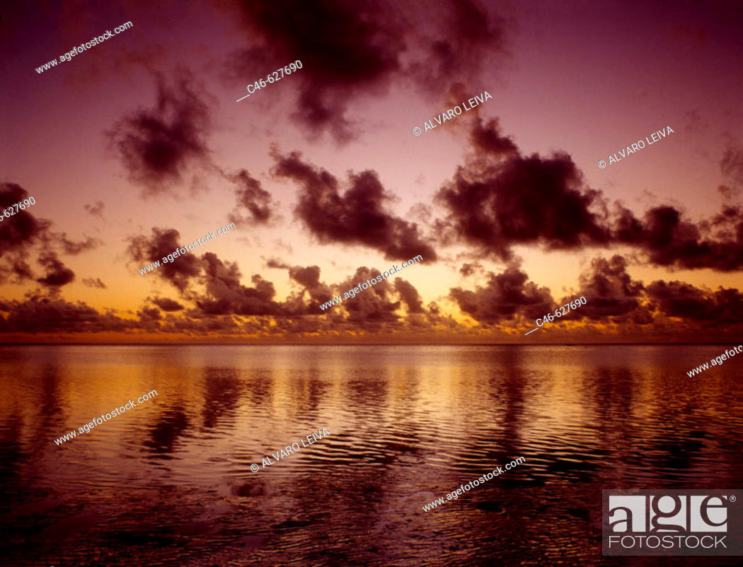 Stock Photo: Jambiani beach. Zanzibar Island. Tanzania.