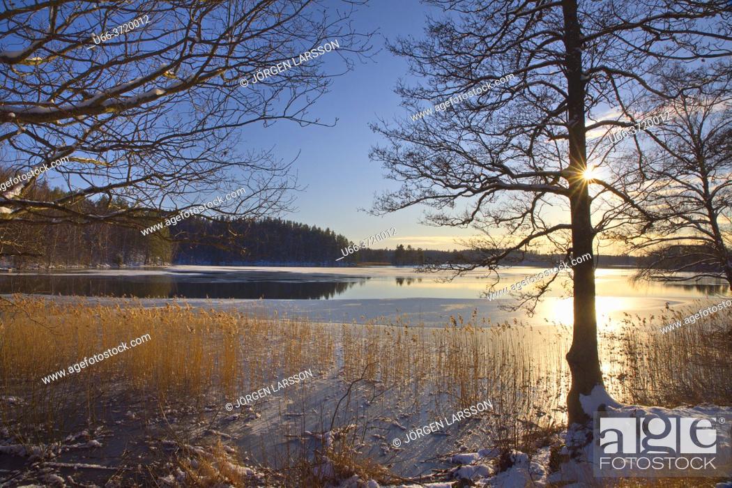 Stock Photo: Lockvattnet Bjornlunda Sweden.