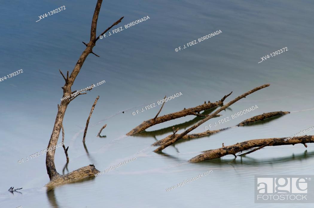 Stock Photo: Mezalocha reservoir  Saragossa province  Aragon  Spain  Europe.