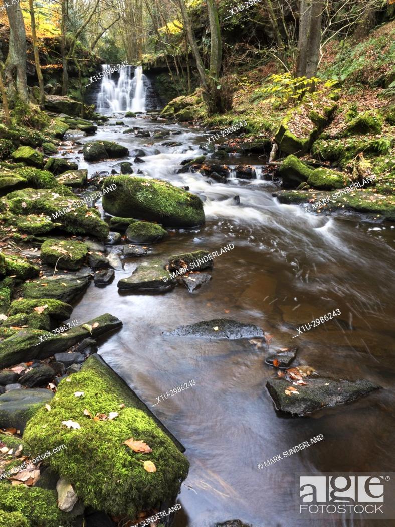 Imagen: Goitstock Waterfall in Autumn, Goitstock Wood, Cullingworth, West Yorkshire, England.