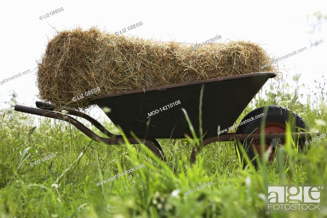 Stock Photo: Hay bale on wheelbarrow in field.