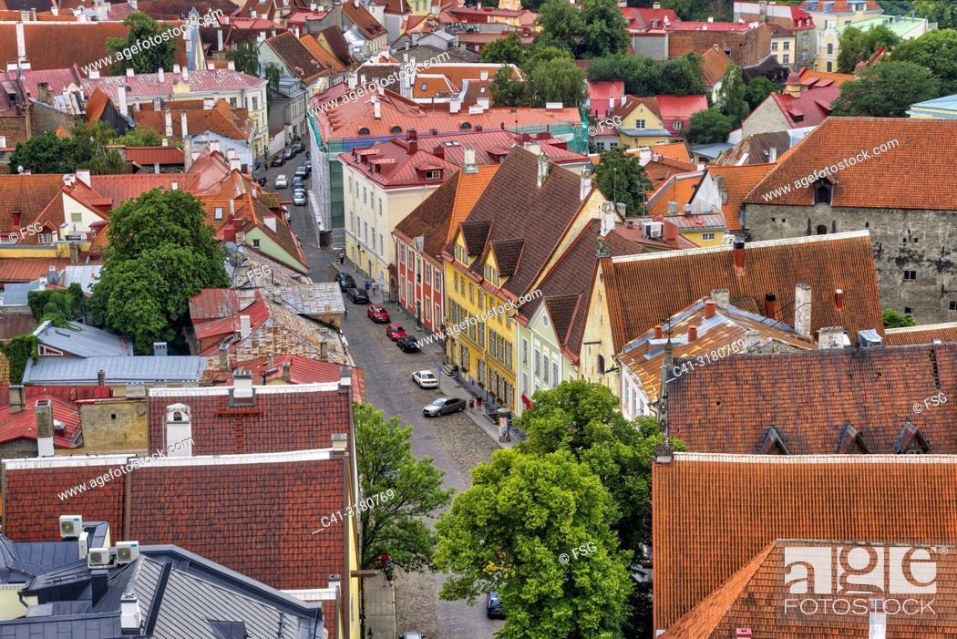 Stock Photo: Old town . Tallinn. Estonia.
