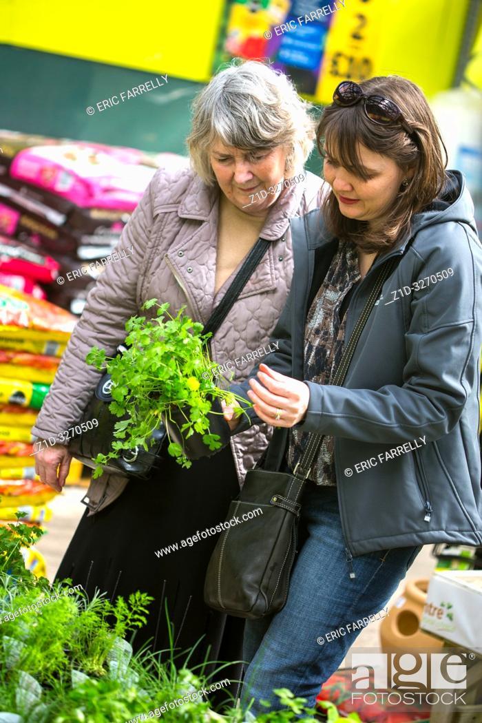 Imagen: Women choosing strawberry plants from garden Centre UK.